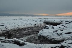 Campbell Creek Estuary 12/26/16 (steve_scordino) Tags: anchorage alaska winter campbellcreek campbellcreekestuary tamron70300mm