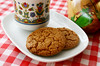 triple ginger ginger cookies (wmpe2000) Tags: 2016 inthekitchen cookies triplegingergingercookies gingersnaps foodstyling cappuccino teatime afternoontea gingham red white checks clogs dutch dutchclogs woodenshoes klompen