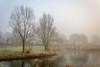 Beukenpark-12-1 (stevefge) Tags: beuningen mist nederland netherlands park gelderland trees water winter reflectyourworld reflections nature nl natuur nederlandvandaag landscape