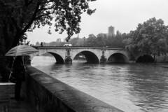 Paris con aguacero #2 (Manuel Gayoso) Tags: isladesanluis paris francia lluvia paraguas sena cruedelaseine blancoynegro monocromo byn