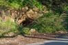 Ψίνθος (Psinthos.Net) Tags: ψίνθοσ psinthos winter january ιανουάριοσ γενάρησ χειμώνασ φύση εξοχή nature countryside χόρτα greens road δρόμοσ φώσ light sunlight φώσήλιου φώσηλίου χώμα έδαφοσ soil ground cave σπηλιά mountainside πλαγιά ξεράχόρτα drygrass shrub branches κλαδιά θάμνοσ κοιλάδα κοιλάδαψίνθοσ κοιλάδαψίνθου psinthosvalley fasoulivalley κοιλάδαφασούλι σκιά shadow φύλλα leaves πέτρεσ stones fallenleaves πεσμέναφύλλα
