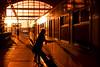 Made It (Rob Kints (Robk1964)) Tags: denhaag hollandsspoor ns nederlandsespoorwegen city dagelijksleven dailylife denhaaghs nederland station straatfotografie streetphotography thehague thenetherlands train trein