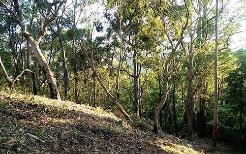 Lot 1, 51 Railway Parade, Woodford NSW 2778