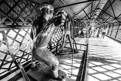 Freedom is such a beautiful thing.. (abhishek.verma55) Tags: freedom prisoners pain struggle india blackandwhite bw monochrome blackwhite monochromelove monochromemadness plight heores independence canon550d rokinon rokinon8mmfisheye ©abhishekverma lightandshadow exploreindia travel travelphotography cellularjail andamannicobar portblair kālā pānī flickr photography incredibleindia