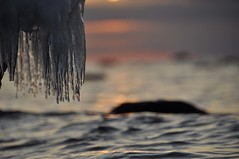 Icy Sunset (FlorDeOro) Tags: nikon d90 tamron 16300mm photography nature sea water sunset ice dof detail bokeh light colorful evening glow closeup winter gotland sweden mijarajc