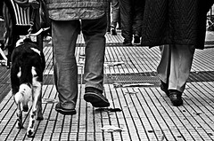 """""""Pasos"""" (Ezequiel Papania) Tags: blancoynegro familia caminata pasos terceraedad mejoramigo fotografiacallejera"""