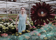 (painted in flames) Tags: flowers girl collage mixed media dress greenhouse