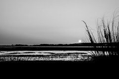 Folly Beach Sunset Monday BW