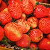 #strawberries #food #baguiocity
