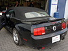 Ford Mustang V Montage