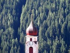 CIMA CAMPANILE WELSCHNOFEN E BOSCO (aldofurlanetto) Tags: bosco welschnofen cimacampanile