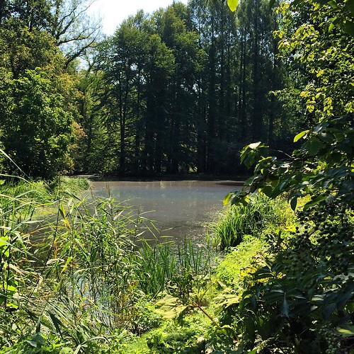 Arboretum de Kornik #poland #pologne #kornik