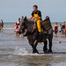 "2015_08_07_Paardenvissers_Oostduinkerke-53 • <a style=""font-size:0.8em;"" href=""http://www.flickr.com/photos/100070713@N08/20404080725/"" target=""_blank"">View on Flickr</a>"