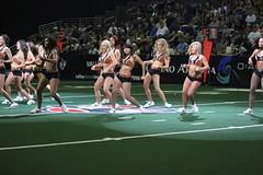 AZ Sidewinders 2015 (Ronald D Morrison) Tags: cheerleaders dancers photoshoot arenafootballleague aflcheerleaders professionalfootballcheerleaders arizonasidewindersdancers cheerleadersinaction