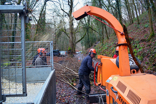 wood-chipping operations at Fingle (2)