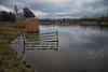 IMG_1121-Edit (brianfagan) Tags: 7d brianfagan ursula canon country eos nottingham nottinghamshire park rushcliffe uk ruddington england unitedkingdom