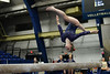 Focus (JPA Photographs) Tags: pitt pittsburgh universityofpittsburgh gymnastics gymnast sports action sportsphotography nikon d610 jpaphotography