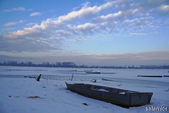 Icy Danube/Zaledjeni Dunav (salaminijo) Tags: outdoor vehicle boat sky icy zaledjeni river reka dunav danube landscape nature priroda zemun semlin beograd belgrade clouds skyporn canon eos 1000d ef1855mm lights winter zima atmosphere detail čamac camera ser led walk riverside dock obala panorama srbija europe evropa