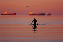 An Early Morning Swimmer (lfeng1014) Tags: emergingfromthesea anearlymorningswimmer swimmer englishbay vancouver britishcolumbia canada sunrise ocean ship water reflection canon5dmarkiii 70200mmf28lisii dawn lifeng travel 蛙人 waves seagull tankers