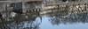 La tête à l'envers, au bord de l'eau (photos.osmose) Tags: arbres art ambiance artiste ballade bordsducanal couleurs ciel canal eau évasion hiver jour lumière mouvement mer miroir ombragé ombrelumièreinsolitetempssoleil paysage promenade paysages pont port passage insolite imaginaire quai aquatique saisons extérieur experience reflets rivage regard rêverie repos temps mystère urbain univers automne nature nantes ville vision villes vue v