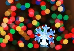 Holiday Macro Snowflake [EXPLORED] (Spebak) Tags: spebak canon canondslr canon70d holidaybokeh macromondays macro macromonday bokeh xmas christmas christmastree snowflake winter