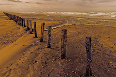 VISION -EL PADRE PICTURE (thierrymuller) Tags: art thierrymuller tamron photo photographie d610 france french frenchtouch mamanano méditerranée nikonpassion nikon nature camargue color couleur plage playa mer