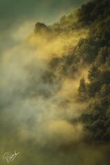 El despertar del bosque (Ricard Sánchez Gadea) Tags: canon catalunya canonistas cataluña catalonia canon7d canoneos7d 7d eos7d 150600 sigma150600mmf563dgoshsmcontemporary sigma150600 sigma sau vilanova de españa es pedres roques stones piedras sunrise sortidadesol amanecer boires nubes clouds panta pantano lightroom light airelibre nube travertet cingles