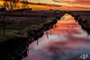 Le marais en feu / The burning marsh - Champagné-les-Marais (christian_lemale) Tags: marais poitevin marsh sunset soleil couchant eau water canal channel champagnélesmarais france nikon d7100