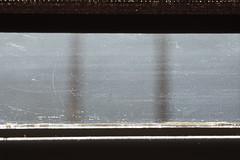 (out of the) windows series, episode 5: depth of reality (Neko! Neko! Neko!) Tags: window windows day light sunlight sun dreams dream daydreaming daydream luciddream lucid elusive elusivemeaning meaning surreal surrealism impression feeling feeel mood mystery thoughts