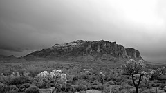 Apache Trail Snow-34 hdr (wNG555) Tags: phx 2012 bw hdr superstitionmountain arizona
