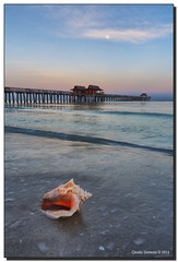 Who Let Mr. Conch Out?! (Fraggle Red) Tags: ocean moon gulfofmexico water clouds sunrise dawn pier sand florida shell naples westcoast hdr conch naplespier singleexposure 7exp collierco canonef1635mmf28liiusm dphdr forthesky forthewater canoneos5dmarkiii 5d3 mrconch 5diii adobelightroom5