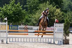 DSC03996_s (AndiP66) Tags: sony sonyalpha 77markii 77ii 77m2 a77ii alpha ilca77m2 slta77ii sony70400mm f456 sony70400mmf456gssmii sal70400g2 andreaspeters springen balsthal samstag saturday 4juli2015 2015 juli july pferd horse schweiz switzerland kantonsolothurn cantonofsolothurn concours contest wettbewerb horsejumping springreiten pferdespringen equestrian sports pferdesport sport