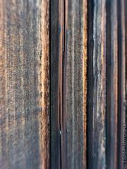 IMGP0237 (blackcloudbrew) Tags: texture barn pinhole 365 q 07 cotati sijul15
