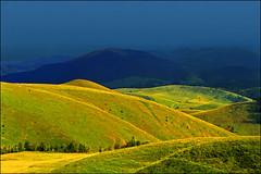 White flock (Katarina 2353) Tags: white mountain landscape serbia flock valley srbija zlatibor serbiainspired