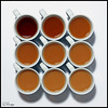 Time for Tea (Donna Rowley) Tags: cup mug espresso tea dilution spectrum black brown sweet drink breakfast beverage china oolong above whitebackground studio tabletop nine square uniform symmetry symmetrical