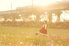 SDF_0859 (SendoFu) Tags: bonnet ボンネット エプロン風スカート blouse bl ブラウス headbow kc カチューシャ bnt 蕾絲 維多利亞 jsk op onepiecedress ワンピース jumperskirt ジャンパースカート nop lolita lolitafashion 蘿莉塔 蘿莉塔時裝 ロリータ・ファッション sweetlolita classicallolita