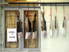 Fish for sale (radimersky) Tags: lantau island hong kong 大澳 wyspa wioska photography asia azja day fish market trag targowisko samsunga52016 sma510f outdoor dzień rybacka travel dried hongkong window okno