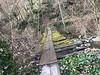 Un giorno Sull'Appennino Tosco-Emiliano (trovado73) Tags: toscoemiliano alberi bosco inverno appennino