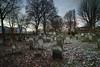 Brady Street Cemetery, Whitechapel (louisberk.com) Tags: brady street whitechapel jewish cemetery east end london dawn january frost snow bare trees glow hebrew headstones burial sigma dp0q lee 09 hard nd grad