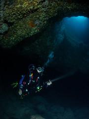 Plongée Estartit (penelope64) Tags: plongée dive diving espagne estartit mer méditerranée sea olympusem5 fisheye panasonic8mmfisheye