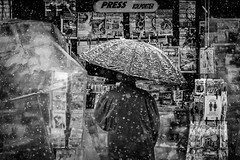 today`s news (Zlatko Vickovic) Tags: streetstreetphoto streetphotography streetphotographybw streetbw streetphotobw blackandwhite monochrome zlatkovickovic zlatkovickovicphotography novisad serbia vojvodina srbija snow noir