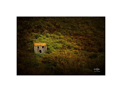 Oh!! (silver/halide) Tags: madeira abandoned farmhouse neglect ruin johnbaker decay derelict startled