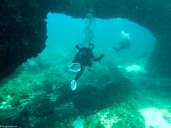 ASM Plongée, Gozo, Malte - Lieux, Malte - Site, Santa Marija Caves 6595.jpg