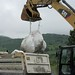 Marine Debris Waste