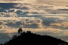El Arbolito. Explore 25 Jul 2015 (Ivan Mauricio Agudelo Velasquez) Tags: sunset cloud sun tree arbol atardecer colombia alambrado potrero cerca silueta