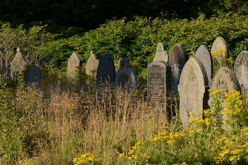 Derelict Churchyard