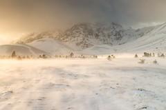Blowing in the Wind (Tommaso Renzi) Tags: wind winter light sunset mountain abruzzo altopiano plateau gransasso campoimperatore