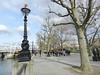 On the move, Thames Walk, London, Feb 2016 (allanmaciver) Tags: victorian lamp thames river walk enjoy stretch black grey city london capital england people something tree viewpoint close allanamciver