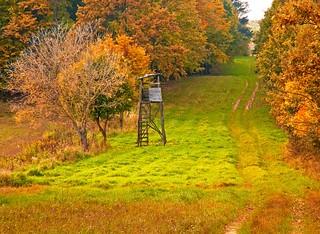 Kentucky Whitetail Hunt 32