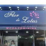 flor de lótus (2)
